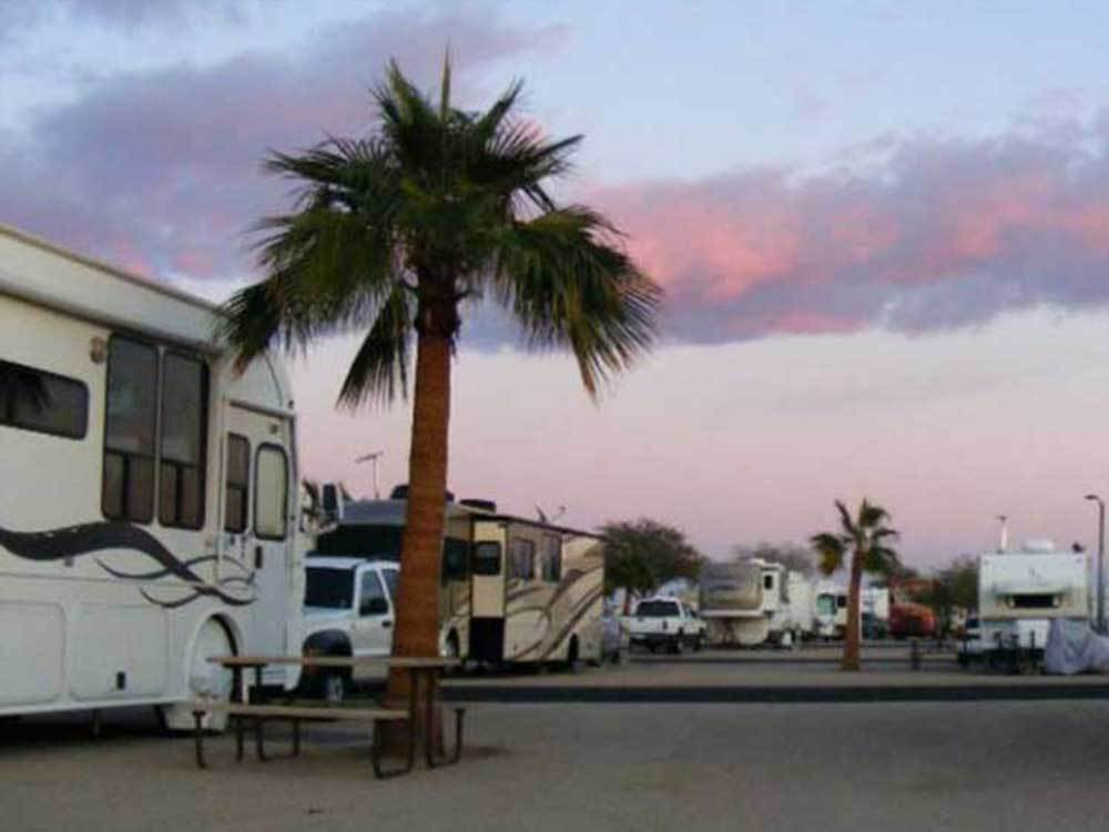 LEAF VERDE RV RESORT At BUCKEYE AZ