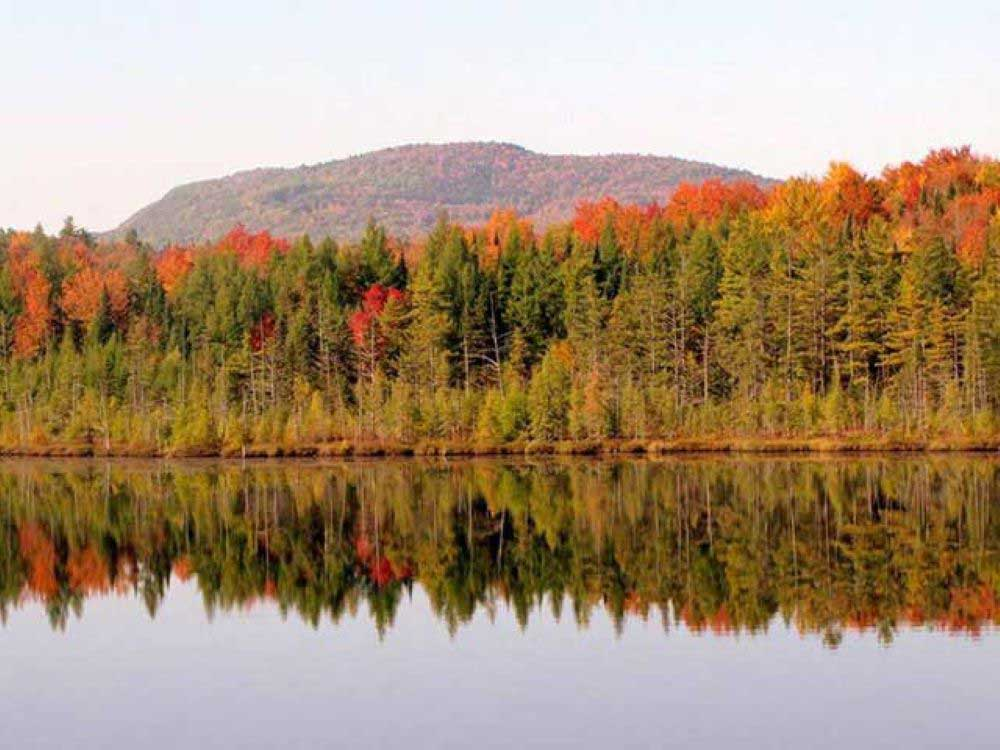 Trees with fall colors reflected on the lake at MOUNTAIN LAKE CAMPING RESORT