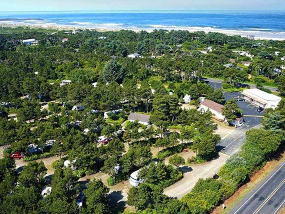 Lovely aerial view of green trees and ocean at HECETA BEACH RV PARK