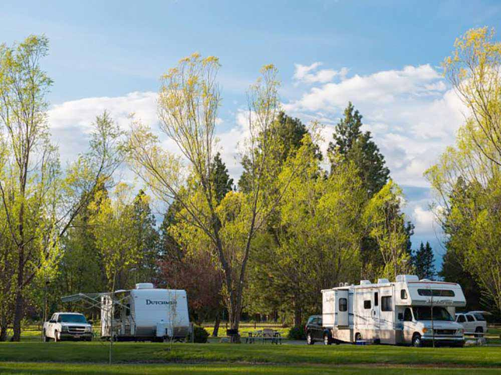 A view of the grassy RV sites at ALPINE COUNTRY STORE  RV PARK