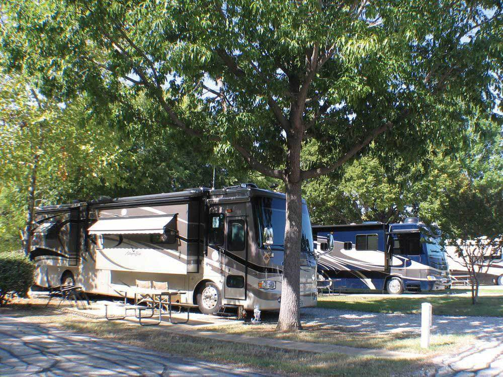 Treetops Rv Resort Arlington Campgrounds Good Sam Club