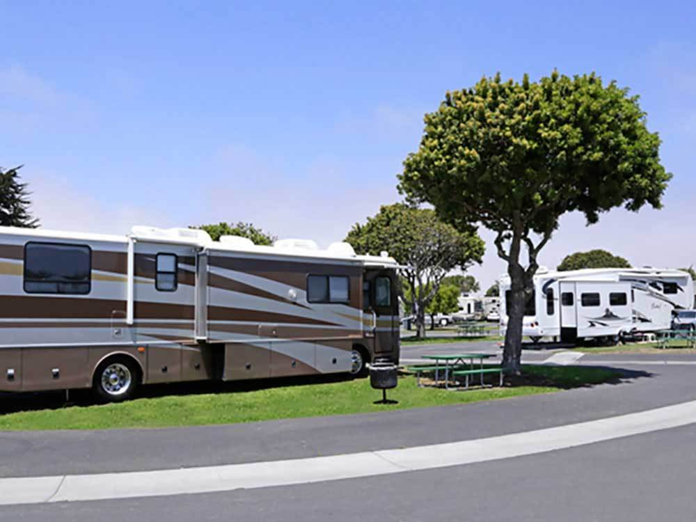 Pismo Sands Rv Park Oceano Campgrounds Good Sam Club
