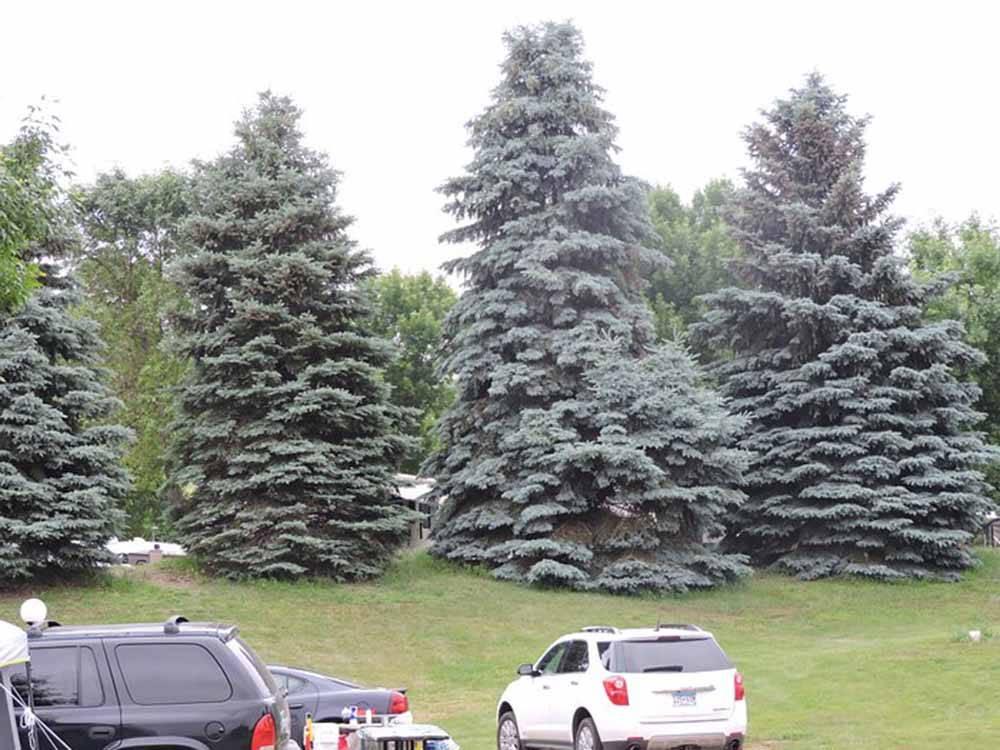 Sioux Falls Yogi Bear Brandon Sd Rv Parks And