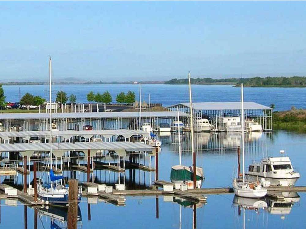 Boats docked in the harbor at UMATILLA MARINA  RV PARK