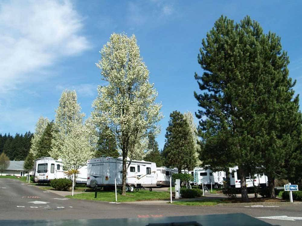 Trailers camping at PHEASANT RIDGE RV RESORT