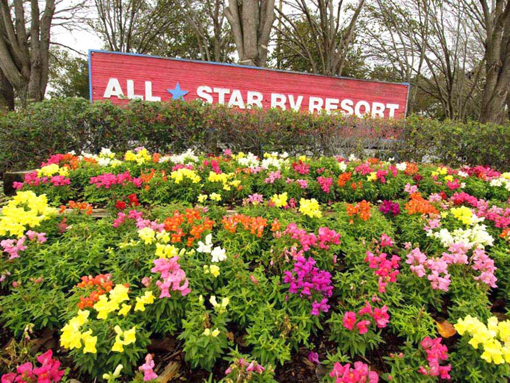 Flowers at ALLSTAR RV RESORT