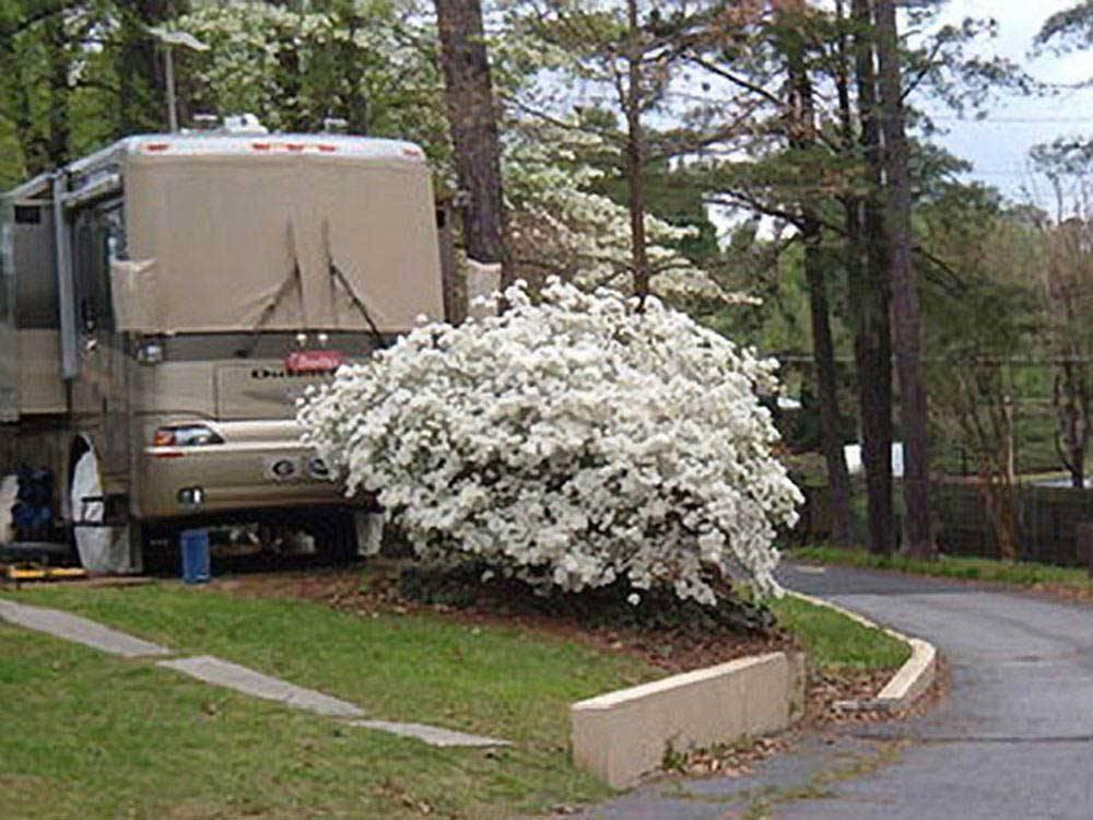 Atlanta Marietta Rv Resort Marietta Ga Rv Parks And