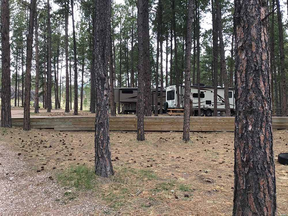 A couple of motorhomes parked among trees at FORT WELIKIT FAMILY CAMPGROUND