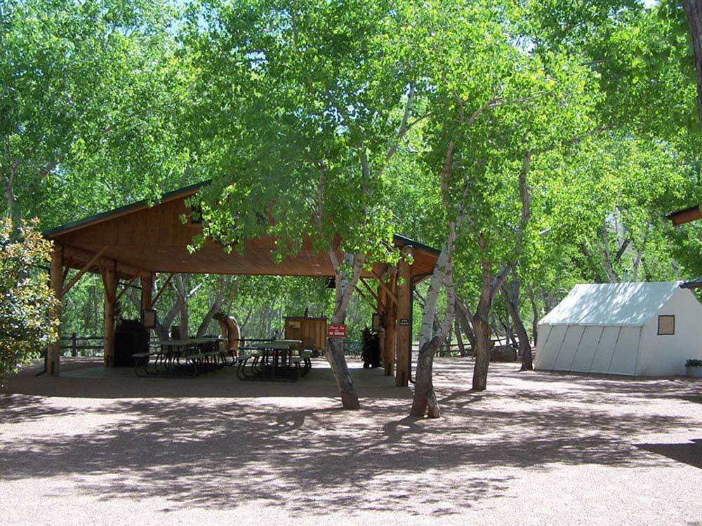 The Place in the Verde Valley for Adults to Get Their