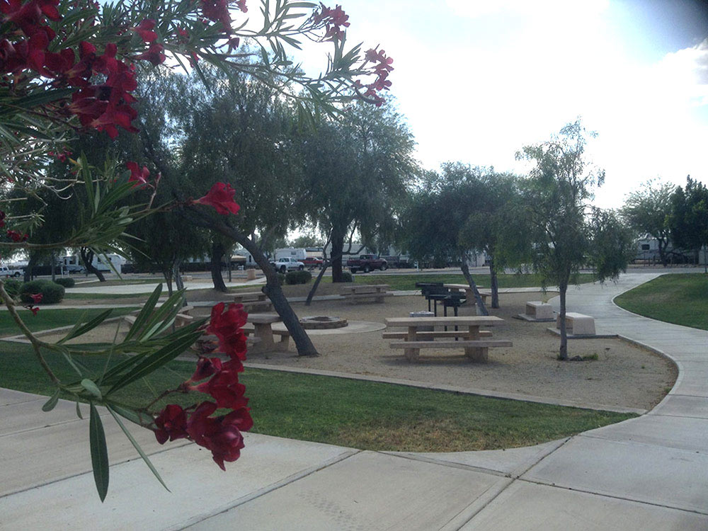 Pleasant Harbor Marina Rv Resort Peoria Campgrounds