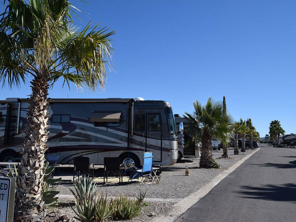 Road leading into campgrounds at DESERT GOLD RV RESORT