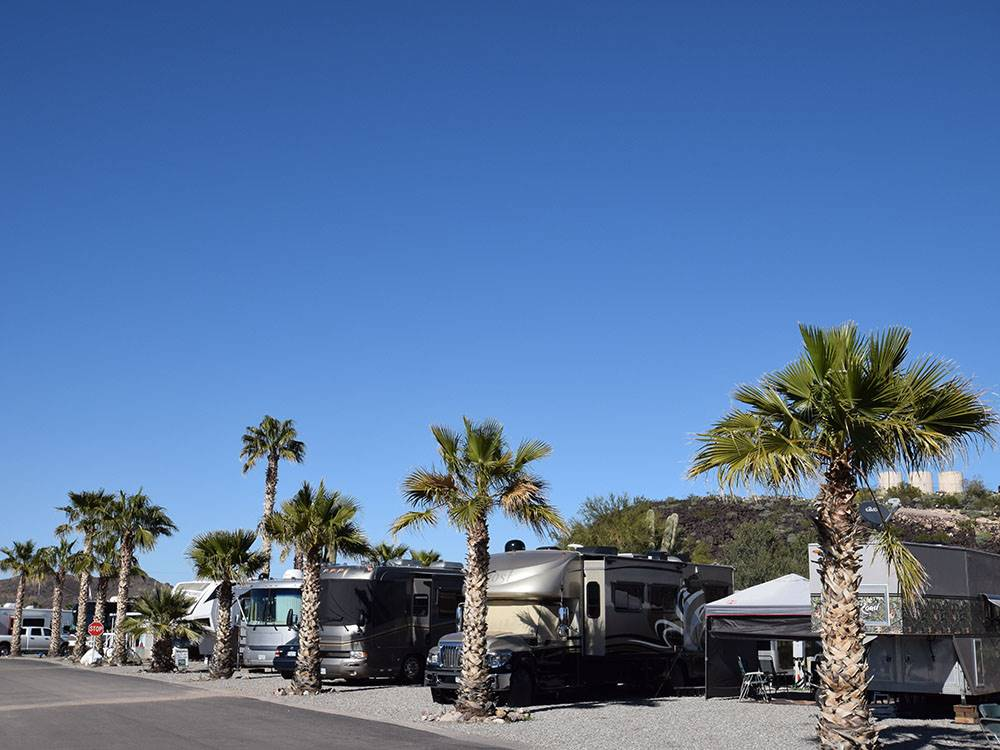 Desert Gold Rv Resort Salome Az Rv Parks And