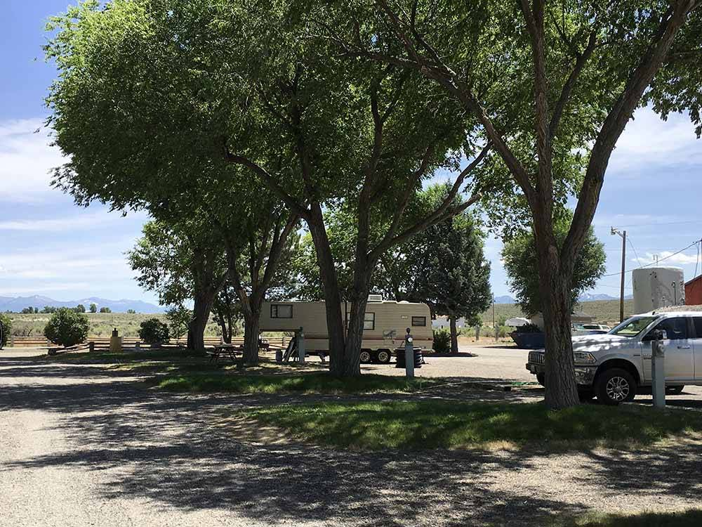A line of trees by some RV sites at ELKO RV PARK