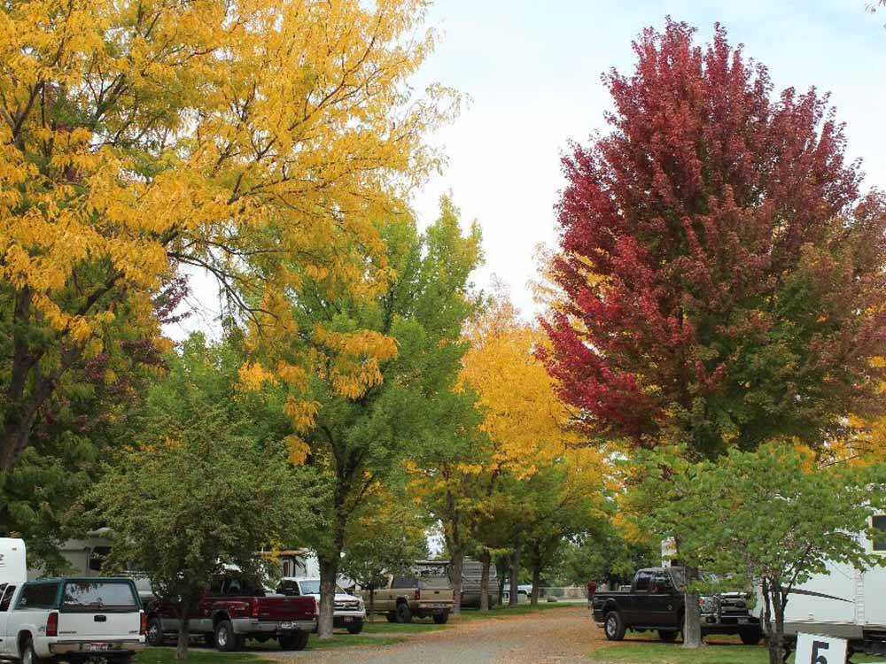 RVs camping at HAGERMAN RV VILLAGE