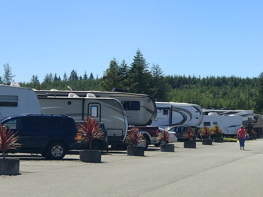 Dog Friendly Rv Parks Near Me