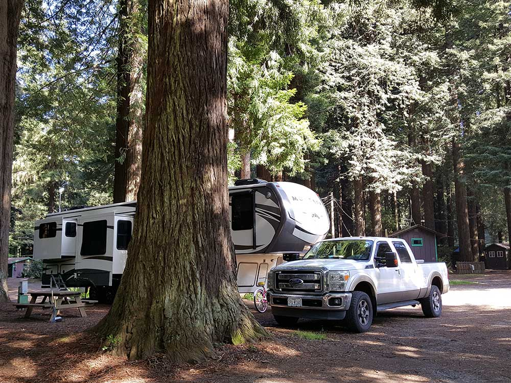 Trailer camping at EMERALD FOREST CABINS  RV
