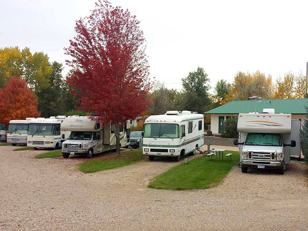 RVs parked in a row at COUNTRY CORNERS RV PARK AND CAMPGROUND