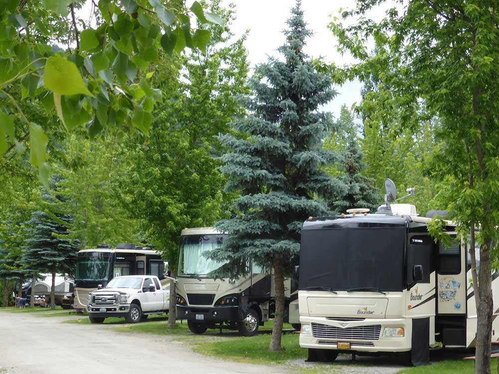 RVs parked in a row at PAIR-A-DICE RV PARK