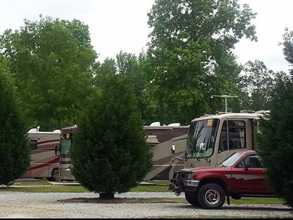 RVs camping at LAKE PINES RV PARK  CAMPGROUND