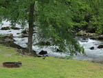 View larger image of Fire pit and lawn with roaring river rapids behind them at CAMP RIVERSLANDING image #3