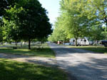 View larger image of Camp grounds and view of trees and RVs at INDIANA BEACH CAMPGROUNDS image #7