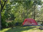 View larger image of Red tent camping at site on grass at WELLS BEACH RESORT image #4