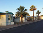 View larger image of Mobile home park with palm trees at HO HO KAM RV PARK image #8