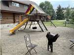 View larger image of Outside rocking bench and picnic table at PONDEROSA CAMPGROUND image #3