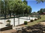 View larger image of The fenced in pickleball court at OASIS RV RESORT  COTTAGES - DURANGO image #7