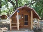 View larger image of Log cabin in the mountains at AUSTIN LONE STAR RV RESORT image #6