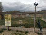 View larger image of WESTERN HILLS CAMPGROUND at RAWLINS WY image #5