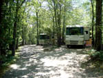 View larger image of RVs camping in the forest at BEAR DEN FAMILY CAMPGROUND AND CREEKSIDE CABINS image #6