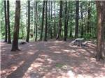 View larger image of Picnic table in the woods at WAKEDA CAMPGROUND image #2