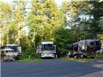 View larger image of A row of tree lined RV sites at WAKEDA CAMPGROUND image #4