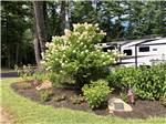 View larger image of A planter with shrubs and a small American flag at WAKEDA CAMPGROUND image #9