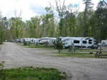 View larger image of RVs and truck and trailers camping at TIMBERLAND LAKE CAMPGROUND image #2
