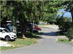 View larger image of A row of tree lined RV sites at CAPE ANN CAMP SITE image #2