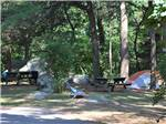 View larger image of One of the tent sites at CAPE ANN CAMP SITE image #5