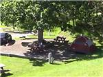 View larger image of Tent with picnic table at RAPID CITY RV PARK AND CAMPGROUND image #8
