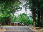 Giant Redwoods RV And Camp