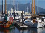 View larger image of A couple of boats docked at MARIN RV PARK image #12