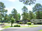 View larger image of RVs and truck and trailers camping at AMERICAN HERITAGE RV PARK image #5