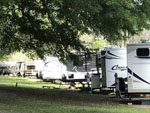 View larger image of Trailers camping at campsite at WHISPERING PINES RV PARK image #6