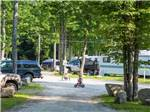 View larger image of Kids riding bikes  at PATTEN POND CAMPING RESORT image #4