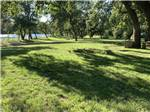 View larger image of A large grassy area with trees at JGW RV PARK image #1