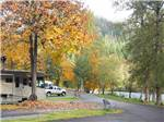 CASEYS RIVERSIDE RV PARK at WESTFIR OR