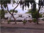 View larger image of A fifth-wheel trailer sitting in an RV site at BLACK CANYON RANCH RV RESORT image #2
