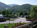 View larger image of RVs surrounded by beautiful nature at RIVER VISTA RV RESORT image #7