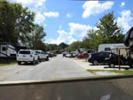 View larger image of Trailers camping at campsite at RIVER VISTA RV RESORT image #8