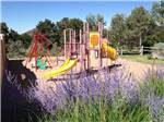 View larger image of Playground with swing set and yellow slide at RANCHEROS DE SANTA FE CAMPGROUND image #3